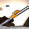 spectrometer in aquarium spectro::lyser
